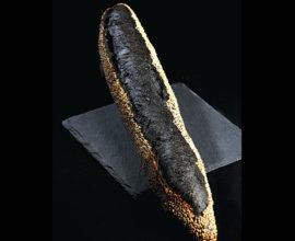 tradition-charbon-vegetal